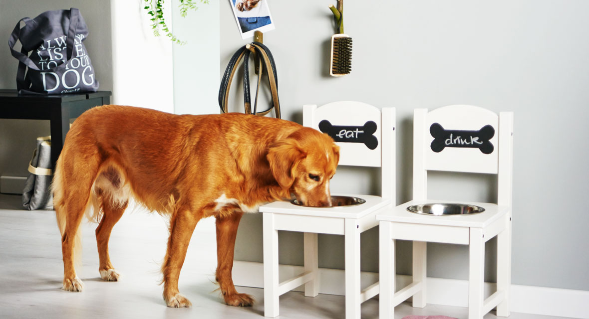 DIY Hund Futterstation