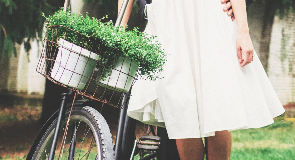 Fahrrad mit Pflanzen im Korb und Brautkleid