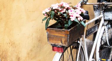 Ein Fahrrad mit einer Holzkiste mit Blumen