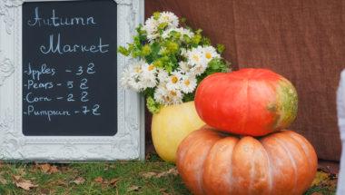 Herbstdeko selber machen mit Kürbissen