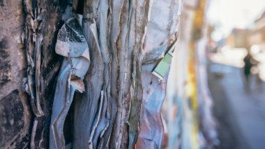 Pappmache ist kinderleicht - auch ohne Kleister